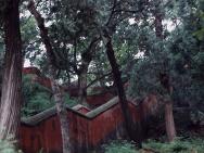 Kloster in Wu-Tai-Chan, China (1994 und 1998), Bild 2