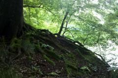 Mystische Orte